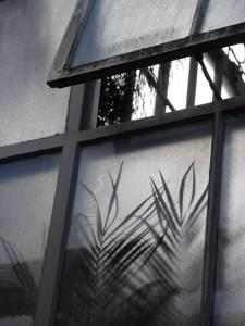 glasshousesm
